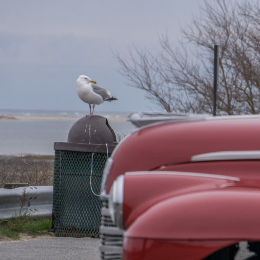 Cap Cod Massachusetts Nouvelle Angleterre-22