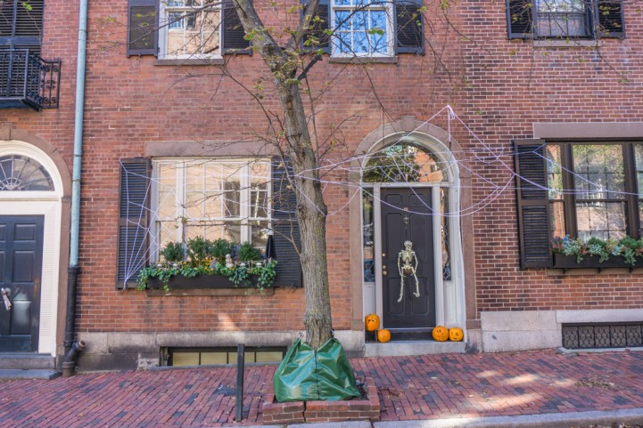 halloween-boston-2