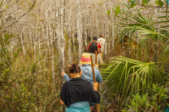 Wet Tour Floride Everglades