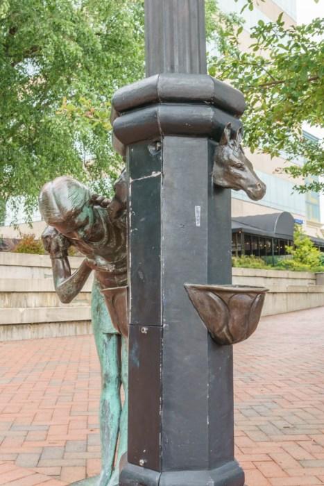 Asheville Caroline du Nord (12 of 27)