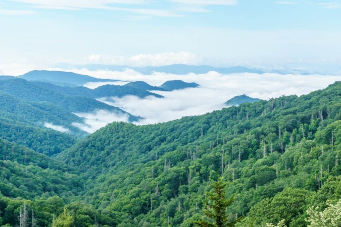 Great Smoky National Park-14