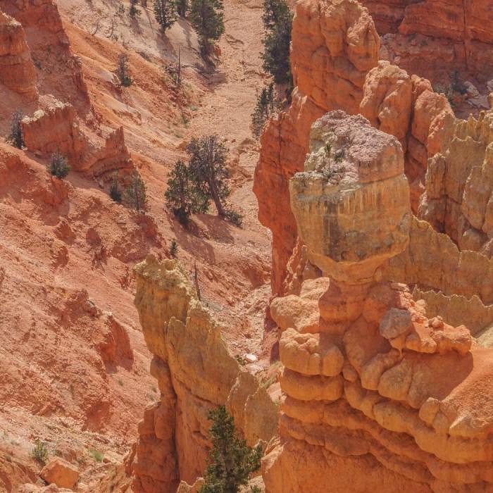 Cedar Breaks National Monument Utah-11