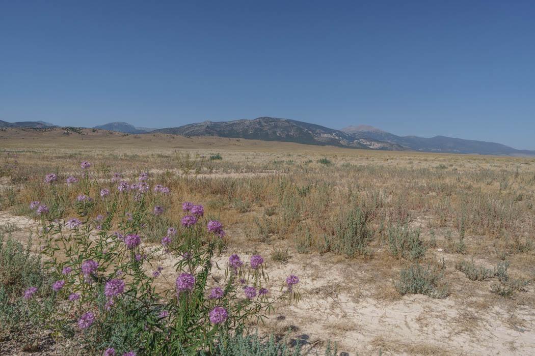 Great Basin National Park Nevada-16