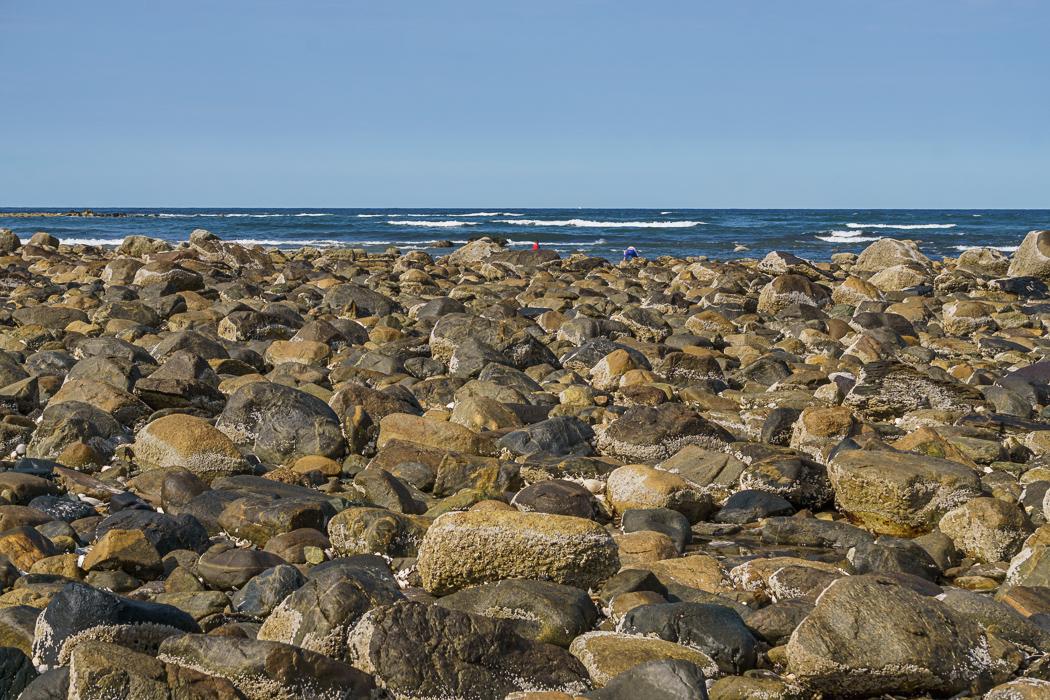 Crane Beach Massachusetts-1