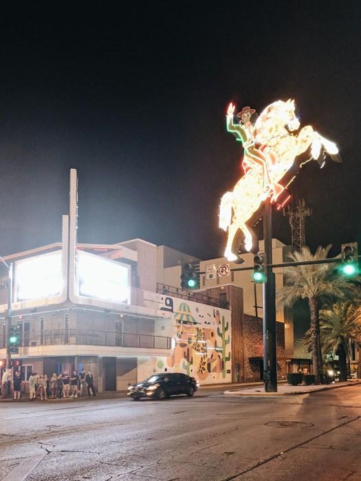 Neon cheval