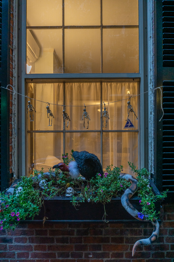 Boston halloween 2018 8