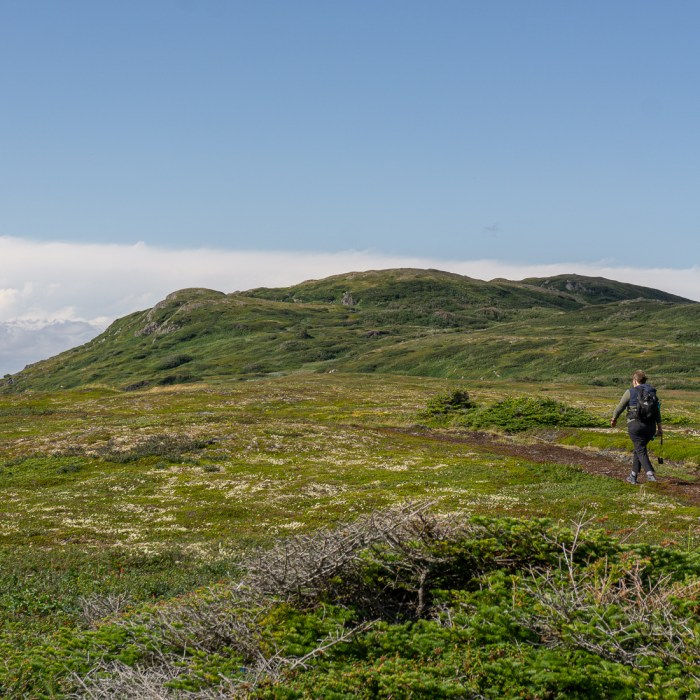 Quirpon island newfoundland terre neuve 3