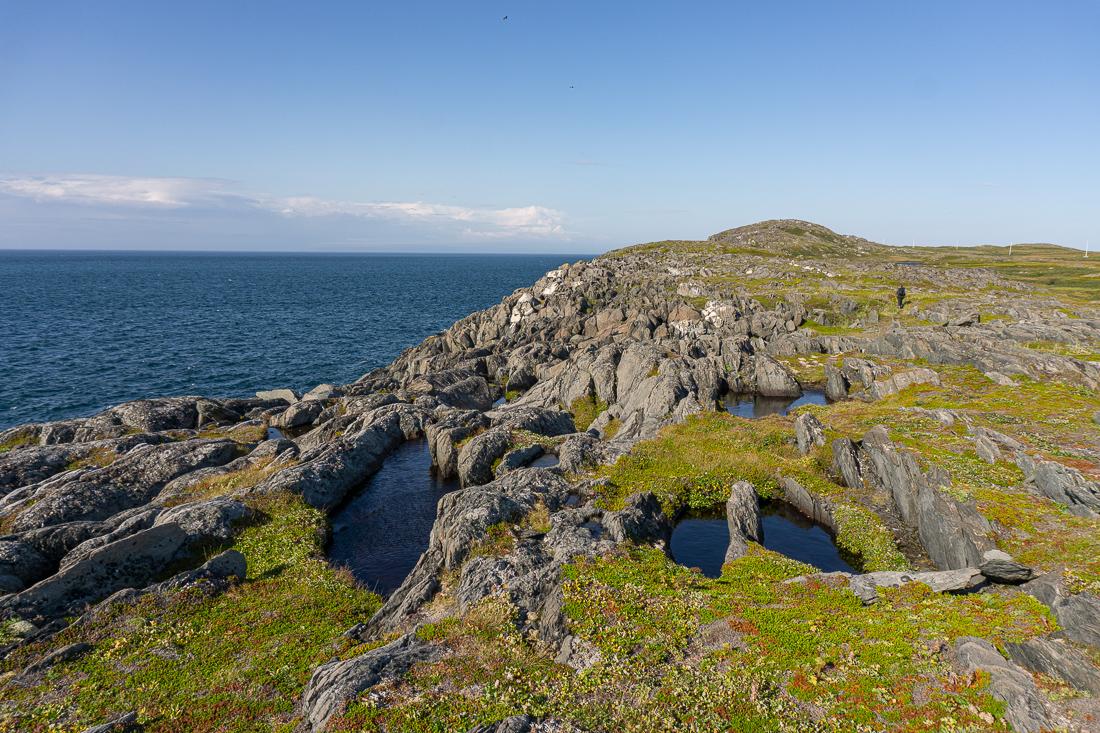 Quirpon island newfoundland terre neuve 6