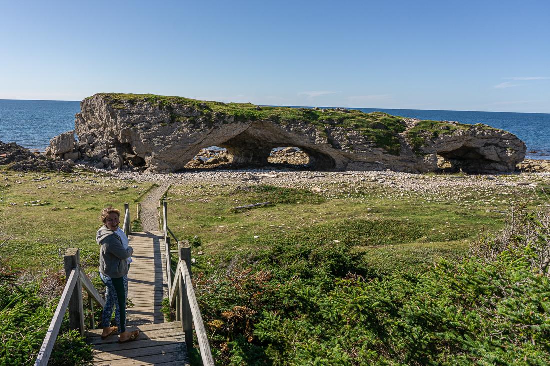 Viking trail newfoundland terre neuve 1