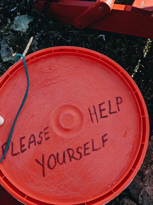 Please help yourself quirpon island