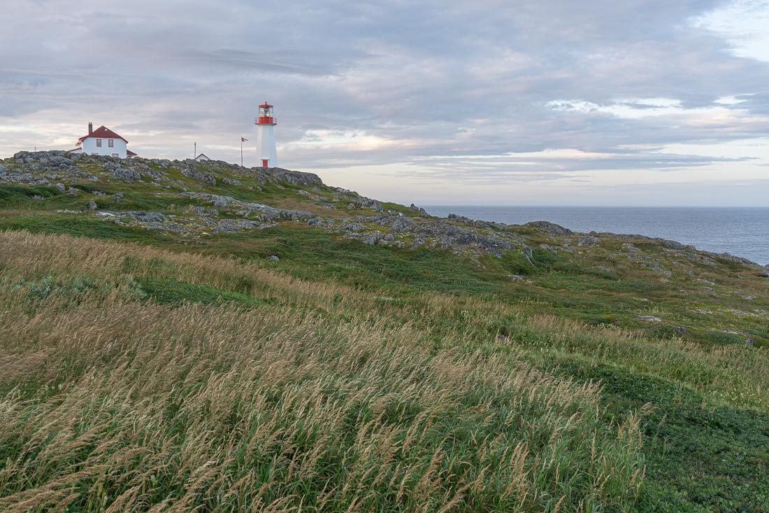 Quirpon island terre neuve le blog de mathilde 1 5