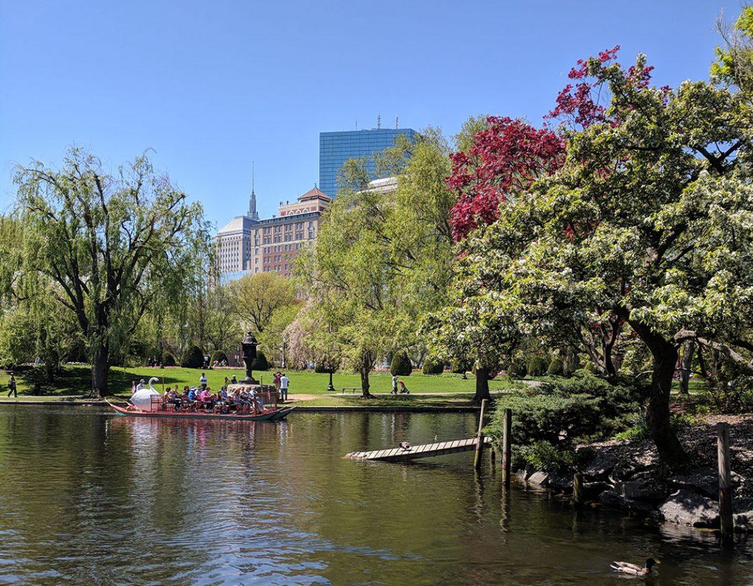 printemps boston