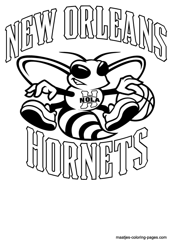 orleans hornets search more book