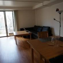 Le salon et notre superbe canapé (avec un angle, mon rêve !)