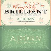 Adorn Font Family 20 Fonts icon