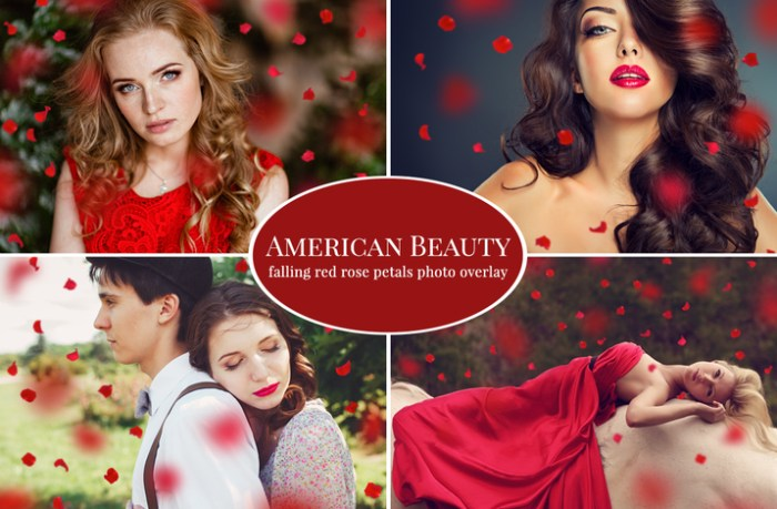 Creativemarket_American_Beauty__red_petals_overlay_152907_cap01