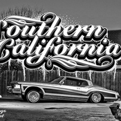 Creativemarket southern california 347548 icon