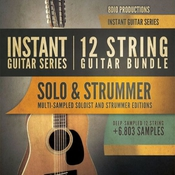 8dio instant guitar series 12 string guitar bundle icon