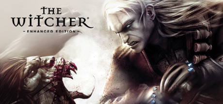 The Witcher Enhanced Edition Directors