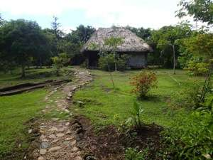 Belize Jungle Camp for Sale