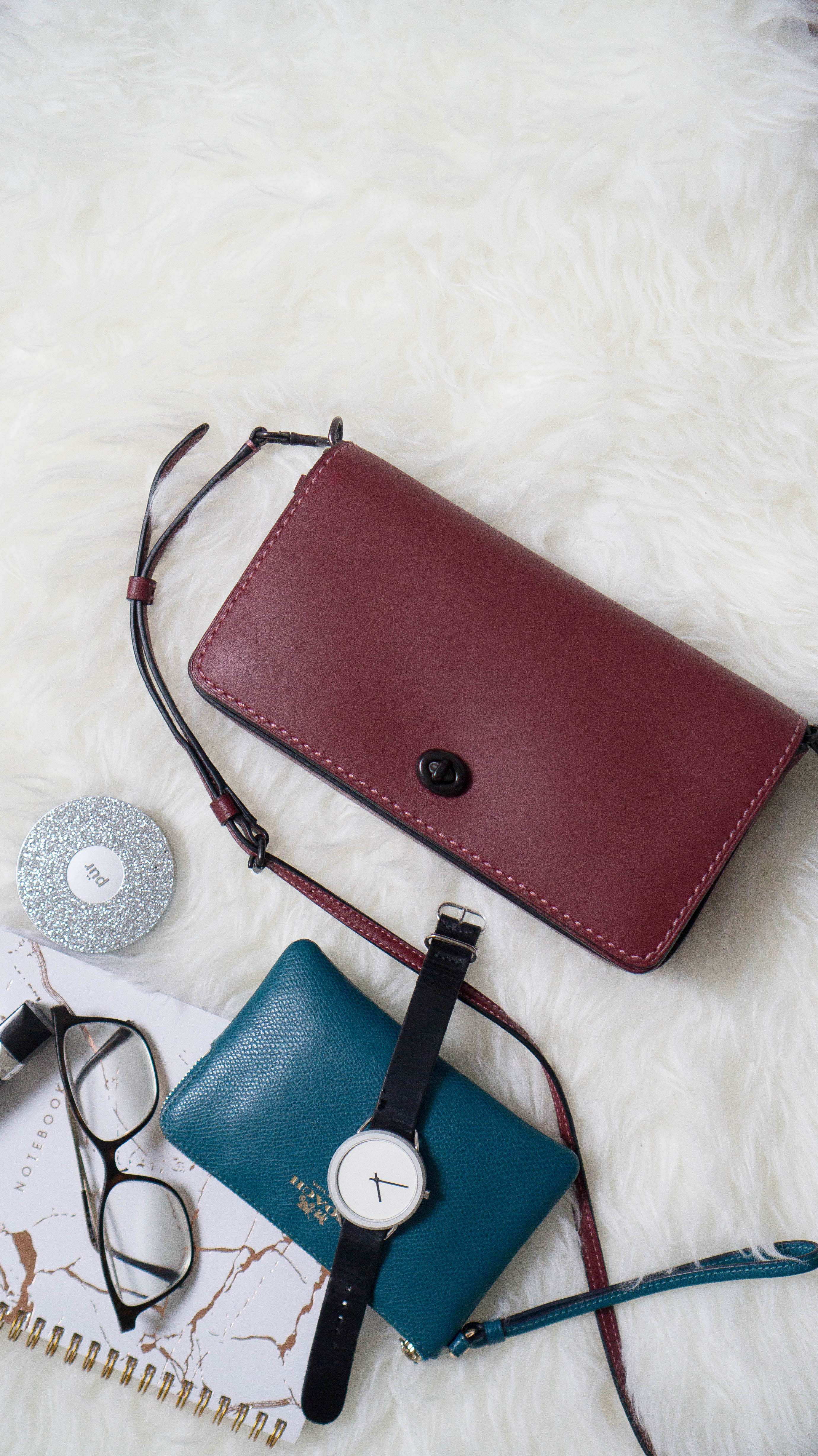 ed448fee034d The Coach Dinky is part of the Pre- Spring 2017 collection but it has a  timeless feel that you could wear throughout the year. My mini Coach  wristlet fits ...