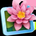 LilyView 1.0