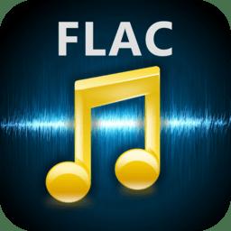 Any FLAC Converter 3.8.23
