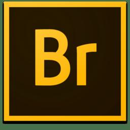 Adobe Bridge CC 2018 8.0.1.282