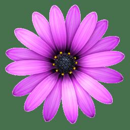 TextMate 2.0.rc.13