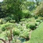 Summer Gardens of Macculloch Hall Historical Museum, Morristown, New Jersey