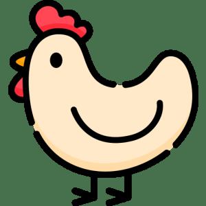 Il Pollo