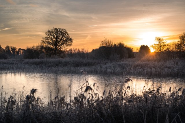 Icy Dawn- Leica M10 with 50mm Summilux M Asph 1/350th at ISO 100