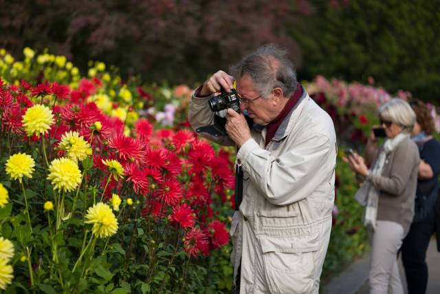 Two eras of photography in the middle of the dahlias on the autumnal flower island Mainau in Lake Constance. The gentleman with a venerable Minolta-SLR, the lady with a  smartphone. (Leica SL, Apo-Summicon 75, 1/640 sec. f/2.0, ISO 50)