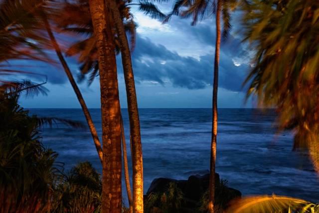 A gentle breeze at dusk