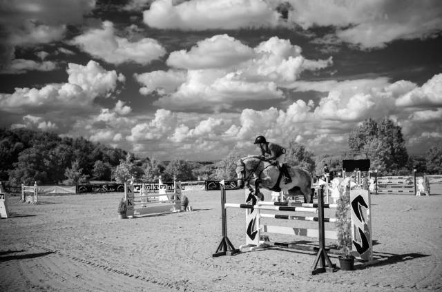 Horse-Show. Leica M10-M mit 35mm Summilux 1/500s f/2.0 ISO 6400 Infrared Filter 715