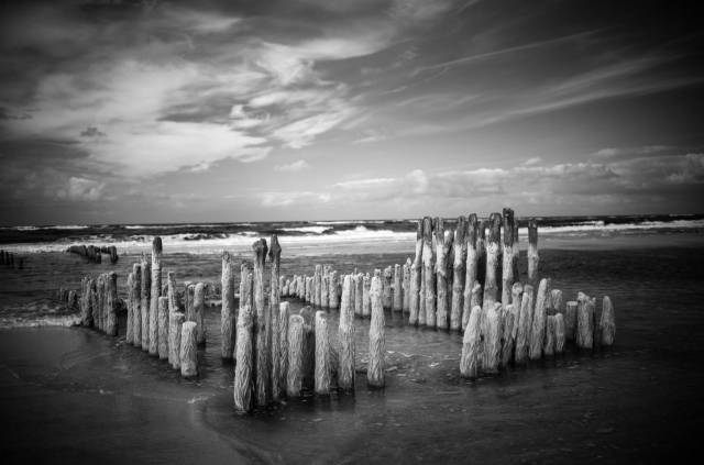 "Old groyne near Rantum. The algea growing over the oak staves contain so much clorophyl than they provide a ""wood effect"". The infrared wavelength produces a distinct ignette when the 25mm Summilux is fully open (which was not added during post-processing. Leica M10-M with 35mm Summilux-< at f/1.4, 1/125s, ISO800, infrared filter 715"