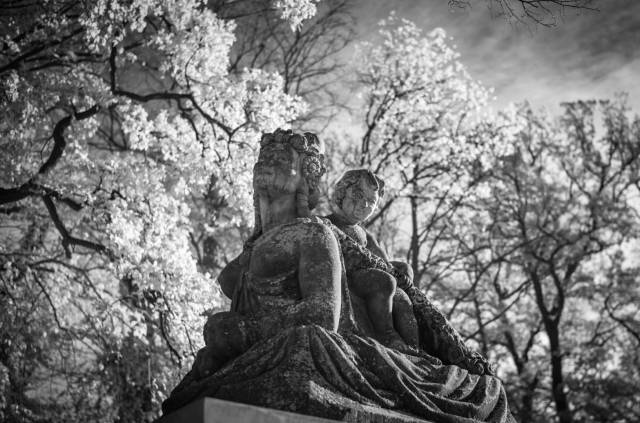 Sphinx. Leica M10-M with 35mm Summilux 1/125s f/2.0 ISO 3200 Infrared Filter 715