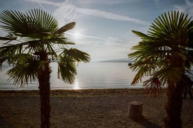 Lake Constance. No kidding, this is the western tip of the Island of Reichenau. Good performance in this backlit situation. BessaR4M, Voigtländer Color-Skopar 21/4.0. Kodak ProImage100.