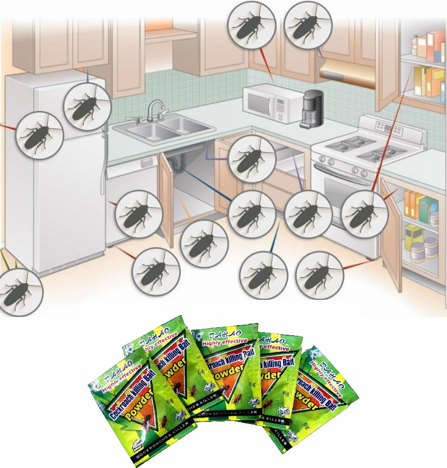 Awesome Best Roach Killer For Apartments Ideas  Decoration Design Ideas  ibmeye.com