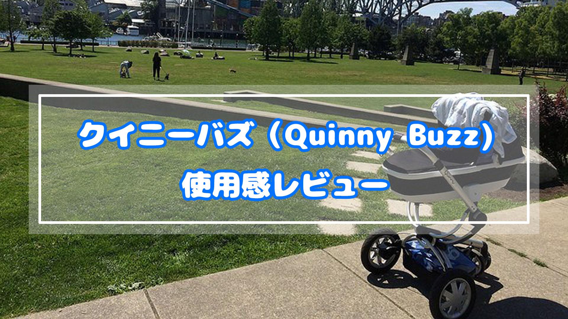 クイニーバズ(Quinny Buzz)の使用感レビュー