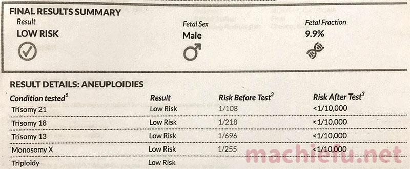 新型出生前診断(NIPT)の検査結果の画像