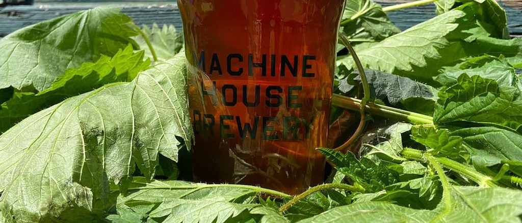 stinging-nettle-machine-house-beer-post