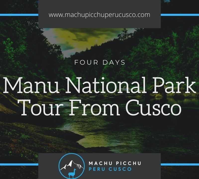 Manu National Park Tours From Cusco