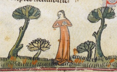 Woman in a very long red cote - notice how it pools on the ground. It seem to have wide neckline. Early 1300's