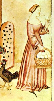 Woman gathering eggs in a very simple gown with a low neckline. It might just be her kirtle/cote.