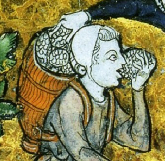 1270: portages of the grapes during the harvest.