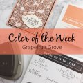 Color of the Week - Grapefruit Grove – Click through to see this week's Color of the Week - Grapefruit Grove. Find color combinations and comparisons, and a list of products containing this color. | #mackenziemakes #makewithcolor #stampinup | www.mackenziemakes.com