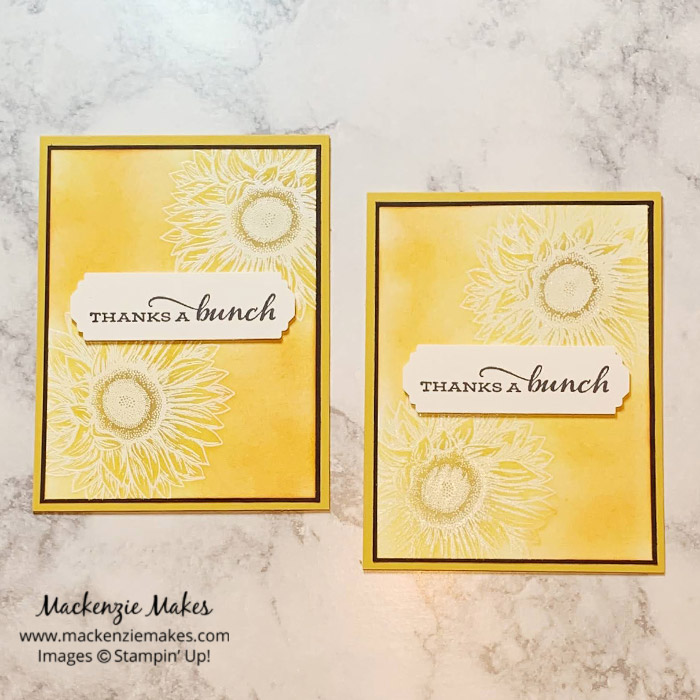 November 2020 Technique Blog Hop - Emboss Resist – Click through to learn how to make a fun card using the Emboss Resist technique. | #mackenziemakes #stampinup | www.mackenziemakes.com