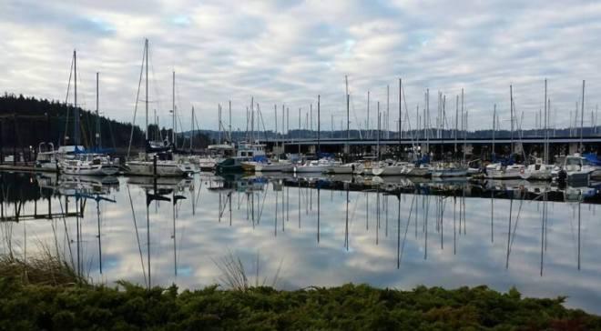 Island Travel Interviews- Whidby Island