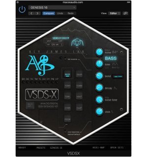 Aly James Lab VSDS X 2